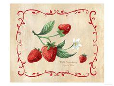 wild strawberries | Zeta Tau Alpha  #ZTA