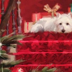 Lovely Westie card I got at Christmas.