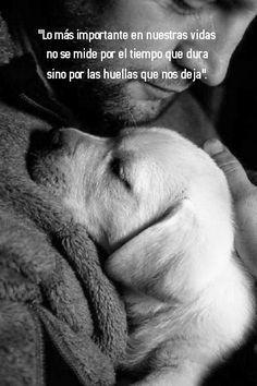 """""""Lo más importante en nuestras vidas no se mide por el tiempo que dura sino por las huellas que nos deja"""". #frases #amistad"""