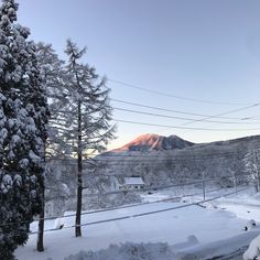 Deluxe Family Suite View!  #mountains #japan #village #ski #snowboard #snow #bedandbreakfast #visitjapan #beautifulplaces #beautifuldestinations Mammoth Lakes, Winter Hiking, Visit Japan, Zermatt, British Columbia, Mount Rainier, Snowboard, Vacation Apartments, Skiing