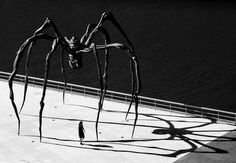 Maman, by Louise Bourgeois.