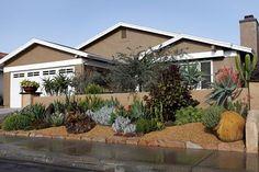 Low maintenance, low water, front yard landscape makeover by Forget Me Not Landscape Design.