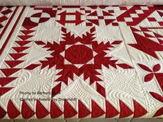 Pieced by Barbara Black and Quilted by Pamela Joy Dransfeldt [Just Takes 2 Quilt?]