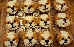 Shih Tzu cupcakes made by Amy Dunn of Amy's Baking Creations in Findlay, Ohio
