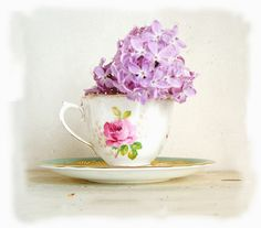 lilac tea by Lilydove  Chou Chou, via Flickr