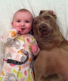 Why Every Baby Needs a Dog in Their Life by Caitlin Wells via thebarkpost.com