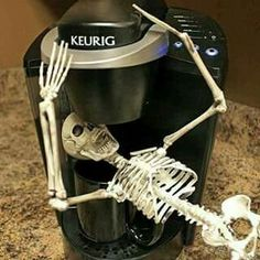Carcass-in-the-Coffee-Maker --- take THAT, you silly elf-on-a-shelf! This would be fun to Do, a skeleton on the shelf, for Halloween. Coffee Is Life, I Love Coffee, My Coffee, Morning Coffee, Coffee Talk, Coffee Lovers, Coffee Shop, Coffee Pics, Coffee Mornings