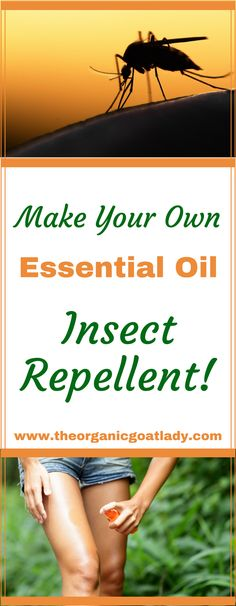 Make Your Own Essential Oil Insect Repellent!