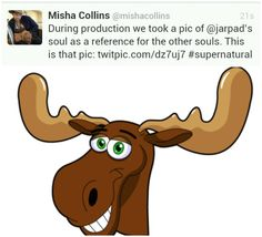 I am completely done with misha. Lolololol