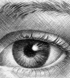 How to Draw Eyes—The Complete Idiot's Quick Guide