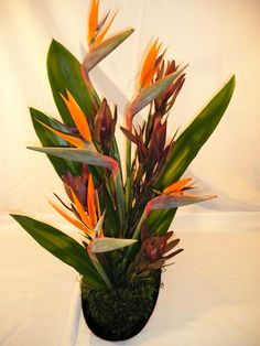 Hawaii Flowers are beautifully displayed as Floral Arrangements which You can do yourself. We have a few examples for you to see.