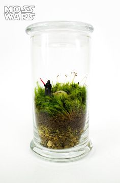 Moss Wars // Darth Vader // Moss Terrarium by MossLoveTerrariums, $34.00 (More at link to Etsy shop.)