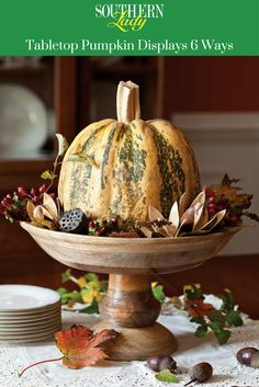 Set your table for glorious autumn with the season's iconic fruit—pumpkins.