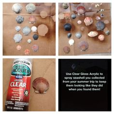 Things To Make With Seashells | Craft Ideas / Make your seashells come back to life!