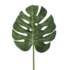Artificial Green Cheese Plant Leaf Stem | Dunelm