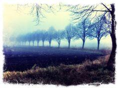 Nebel in Ostfriesland von Andreas Kutter