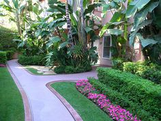 tailored green and pink-beverly hills hotel