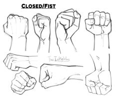 Hand References: Fists by TheInkyWay on DeviantArt