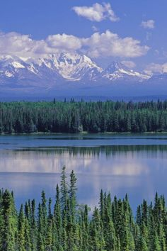 Wrangell - St Elias National Park, Alaska is over 13 million acres and is larger than the country of Switzerland.