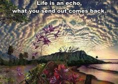 """Life is an echo, what you send out comes back."" Why Que Linda Vida Transformative Coaching focuses on where you come FROM & the vibrations you send out.what are you in alignment with.you Life REFLECTS! book your session: All Nature, Amazing Nature, Law Of Attraction, Awakening, Beautiful Places, Beautiful Pictures, Beautiful Beach, Beautiful Life, Simply Beautiful"