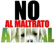 Di NO al maltrato animal!