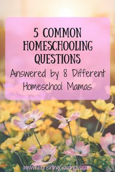 Have you ever wished that you could take a peek inside the lives of a variety of homeschooling families?  How to Homeschool, Homeschool Ideas, Homeschool Tips, Homeschool Philosophies, Ways to Homeschool