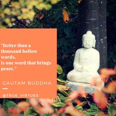Better than a thousand hollow words is one word that brings peace. -Gautama Buddha Visit truevirtues.com for our buddhism products. #buddha #thoughts #quoteoftheday #quotes #quotestoliveby #quotesandsayings #quoteble #philosophy #positivethinking #positivity #love #peace #yoga #yogainspiration #yogaeverydamnday #yogi #believeinyourself #wordsofwisdom  #wordstoliveby #wordoftheday #words #photooftheday #picoftheday #deep #deepthoughts