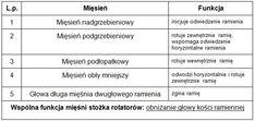 Praktyczna fizjoterapia - Najczęstsze dolegliwości bólowe kompleksu łopatkowo- -ramiennego