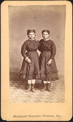 McAdam's Gallery (Wenona, Ill.)   Identical twins   n.d.       Carte de visite…