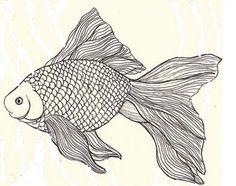 Goldfish line drawing - photo#39