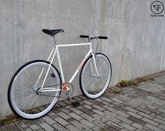 PINARELLO Fixie gears. Custome by Fajna Rama  #pinarello #campagnolo #bike #fixegear #fixie