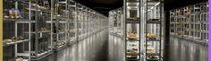 museum showcase - Google 검색