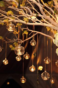 For a warm glow, hang glass orbs with floating votive candles from branches scattered with Cymbidium orchids.