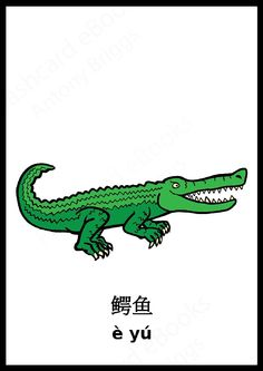 Chinese Crocodile flashcard - Learn Chinese Vocabulary - Animals - Out now on Amazon #pinyin #Chinese #Flashcards