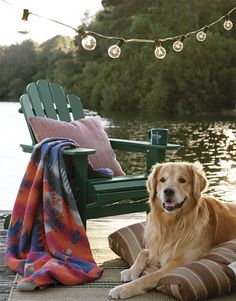 """A blanket perfect for misty mornings and cool evenings. Grab your coffee and curl up on your favorite Adirondack chair with this handsome throw. Blanket-stitch edges detail the traditional pattern. In brown stripe, navy print. 60"""" x 72"""". Acrylic/polyester/new wool/other. Washable. Made in USA."""