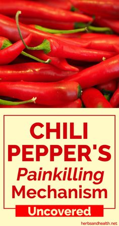 Chili peppers are the most commonly used spice that is part of the cuisine in Asia, India, and Central America. The heat provided by chili peppers is the main reason. Health And Beauty Tips, Health Tips, Health Heal, Calorie Intake, Natural Medicine, Herbal Remedies, Natural Health, Chili, Herbalism