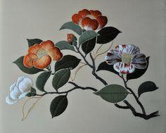 Threads Across the Web: Camellias