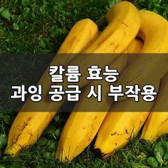 칼륨 효능 및 과잉 공급 시 부작용 꼭 필요한 성분 칼륨은 우리 몸에서 없어서는 안되는 성분이지만 아이러...