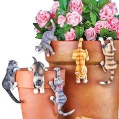 Super Cute Kitten Planter Pot Hanger Decorations, Set Of 6 - Makes a Great Garden Gift for Cat Lovers : Garden & Outdoor garden decor with cats. #cat #kittens #gardens #gifts #cute Super Cute Kittens, Funny Cute Cats, Kittens Cutest, Classic Home Decor, Cute Home Decor, Pot Hanger, Outdoor Garden Decor, Cat Lover Gifts, Cat Lovers