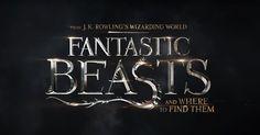 Die Abenteuer des Forschers und Zauberers Newt Scamander in New York's geheimer Welt von Hexen und Zauberern - 70 Jahre bevor Harry Potter das Buch in seiner Schule liest. PHANTASTISCHE TIERWESEN UND WO SIE ZU FINDEN SIND - Nur im Kino