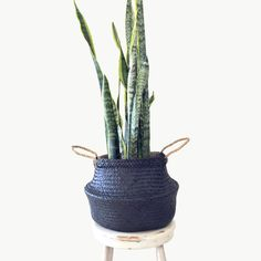 Versatile black hand made Eco SEAGRASS BASKETS are perfect for indoor plants, storage for kids toys, towels or weekend visits to the beach and markets.