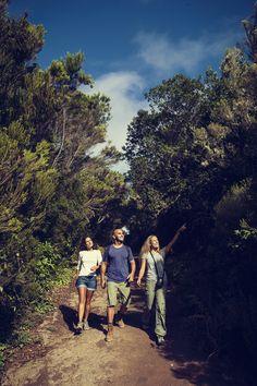 webtenerife.com Laurisilva, Anaga, Tenerife. Senderismo // Hiking, trekking // Wandern in Teneriffa