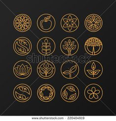 Vector abstract emblem - outline monogram - nature symbols - concept for organic shop - set of abstract design element- logo design template