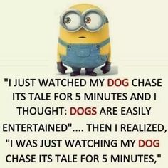 28 Minion Quotes Funny Jokes From Your Favorite Little Guys