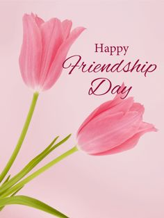 Send Free Tulip Happy Friendship Day Card to Loved Ones on Birthday & Greeting Cards by Davia. Happy Friendship Day Photos, Friendship Day Cards, Friendship Day Wallpaper, Friendship Images, Real Friendship Quotes, Best Friendship, Friendship Day Greetings, Happy Valentines Day Images, Beautiful Bouquet Of Flowers