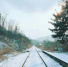 Photo by Kim Taehyung // V // BTS // spring day Minimalist Photos, Minimalist Photography, Bts You Never Walk Alone, Bts Mv, Bts Jungkook, Fotos Do Instagram, Bts Backgrounds, Bts Wallpaper, Bts Spring Day Wallpaper