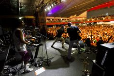 #znvg #live #aovivo