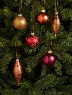 Buy John Lewis & Partners Campfire Assorted Decorated Baubles, Box of Bronze from our Baubles & Tree Decorations range at John Lewis & Partners. Christmas Colors, Christmas Themes, Christmas Decorations, Christmas Ornaments, Holiday Decor, Name Day, Bird Watching, Tree Decorations, John Lewis
