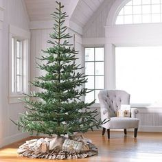 Our Noblis Fir Tree is a designer delight it makes a fresh, stunning statement, and it a cinch to decorate. Discover the magic of our fresh-from-the-forest tree's splendid, even with nothing on. From the broad base to the open top, the sculpted boughs extend elegantly from the artfully exposed trunk. It's so realistic that we decided to leave it unlit, so you can decide how natural you want it to be. Even the lightest layer of ornaments stands out on the sweeping branches. ...