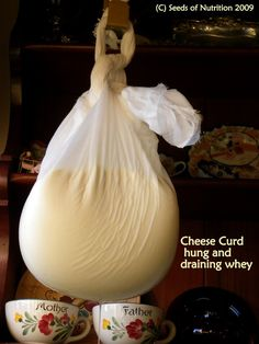 Cheese Making: Raw Milk & Mozzarella post Update: « Seeds of Nutrition
